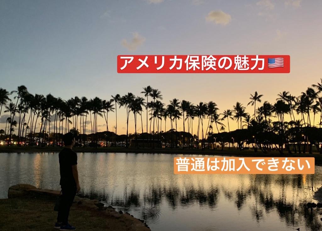 ハワイで加入できるアメリカ保険。まとまったお金を安全に増やしたい人や、3世代に渡って資産を継承したい人に向けて